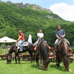 Sapporo Horseback Riding_Wild Mustangs