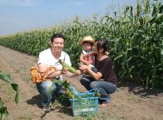 Hokkaido Corn Picking_Sapporo optional tours
