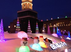 Winter Illumination,Sapporo Half Day Tour