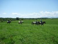 札幌乗馬体験_恵庭ホースガーデンMURANAKA