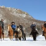 札幌雪中乗馬体験送迎付き_ワイルドムスタングス
