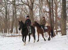 札幌雪中乗馬体験送迎付き_石狩フロンテア乗馬クラブ
