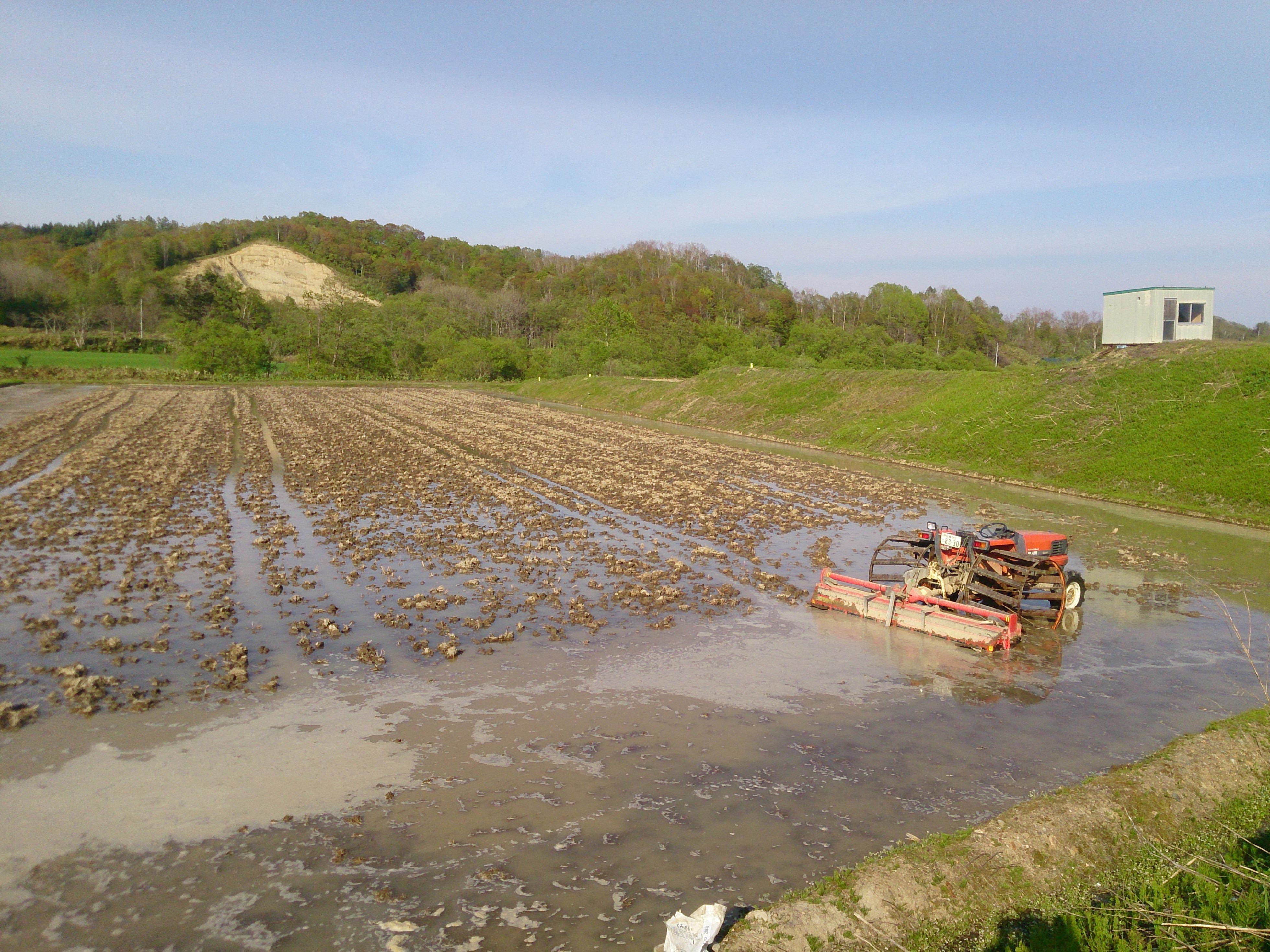 体験農場の水田に水が入りました!田植え体験まであと3週間