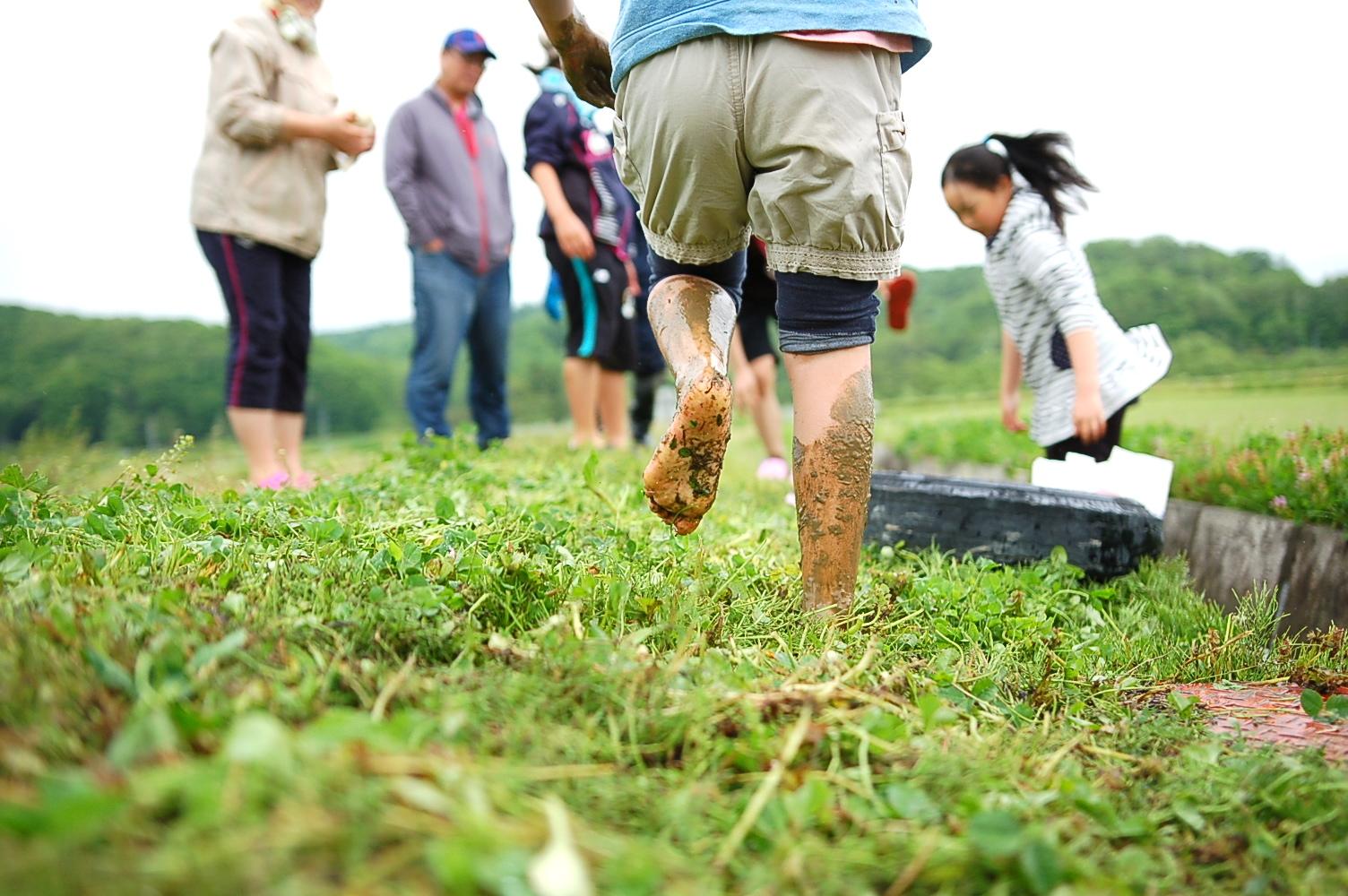 月形町の稲作農家で「田植え体験」が開催されました!
