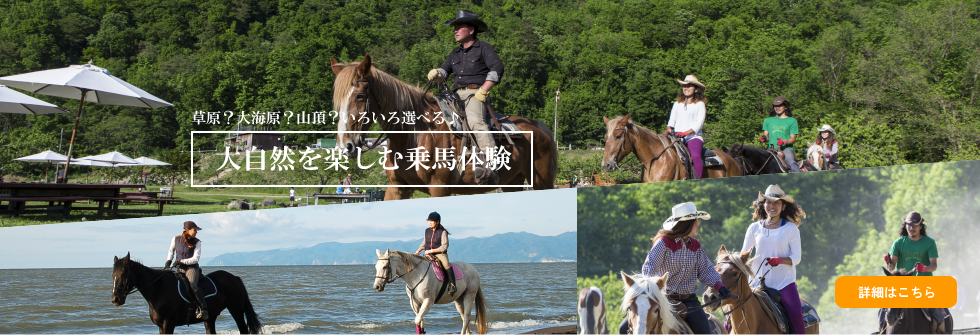 horse01_pc