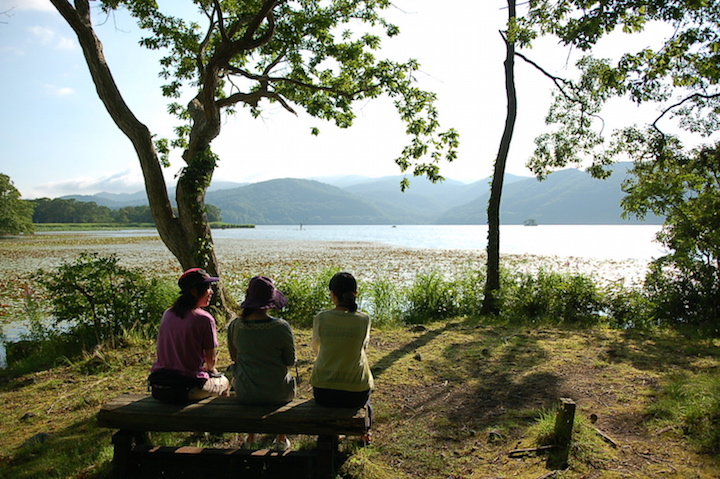 大沼公園をガイドと歩く散策ツアーが開催されています